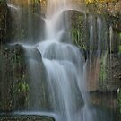 Waterfall at Spring Park by DebbieCHayes