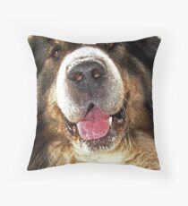 Barney Throw Pillow