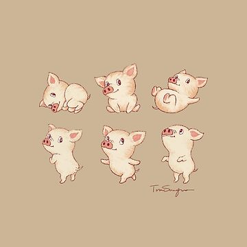 Lindos cerdos varias poses de sanogawa