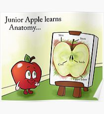Junior Apple Lesson Poster
