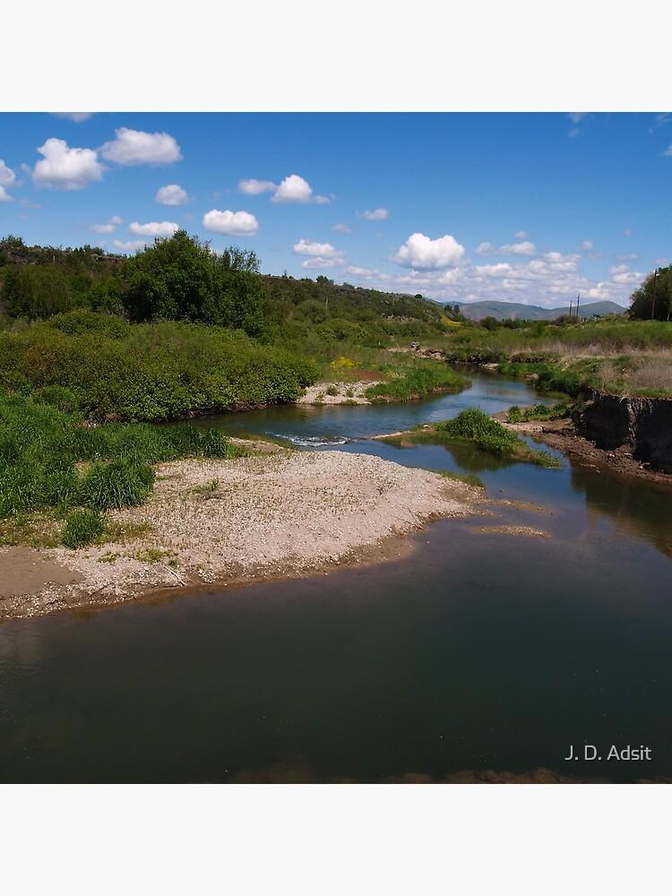 Pausing by Pebble Creek by adsitprojectpro