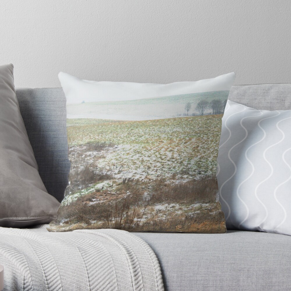 The First Step of Winter Throw Pillow