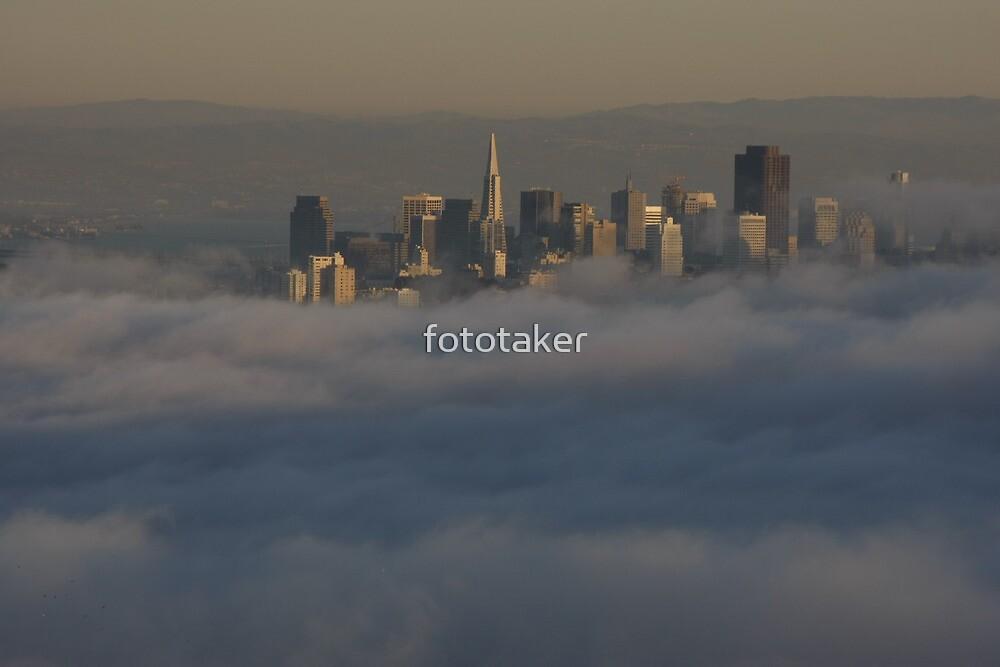 Draped in Fog by fototaker