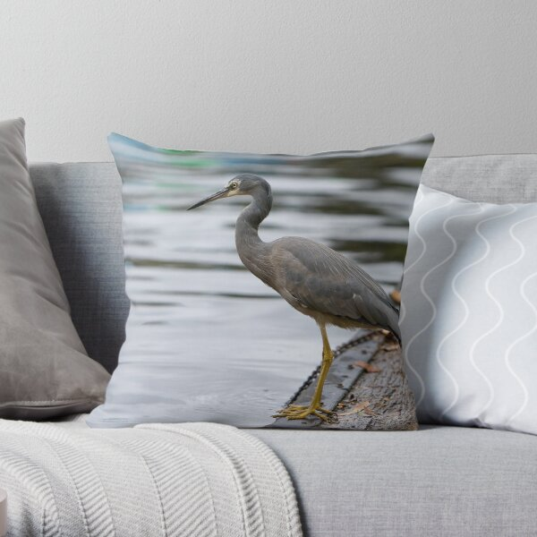 Heron on Torrens. Throw Pillow