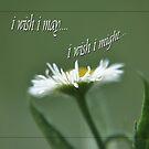 i wish i may... by budrfli
