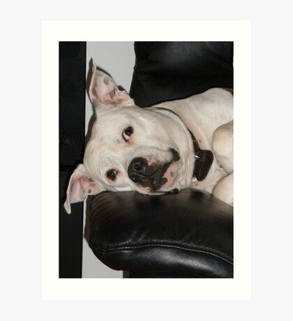 dog tired. Art Print