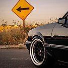 5.0 Mustang Dropped Notchback  by Shayera