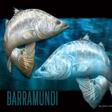 Cruising Chrome - barramundi by barradingo
