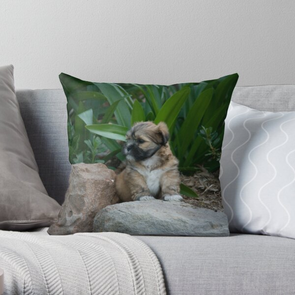 I am the King Throw Pillow