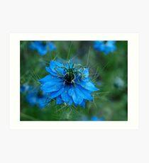 Spiky Blue Love Art Print