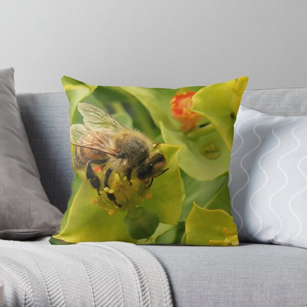 Mr Bee Throw Pillow