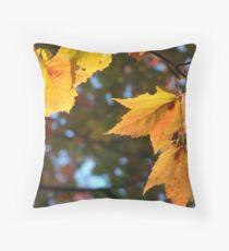 Delicious Autumn Throw Pillow