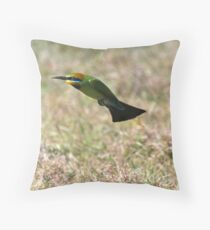 Houston we have lift off!  Throw Pillow