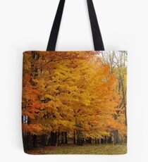Rich Tapestry Tote Bag