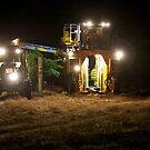 Night Harvest by 1randomredhead