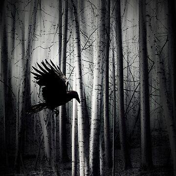 darker - Raven by DyrkWyst