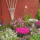 My Garden:  One Year Later by Zoe Marlowe