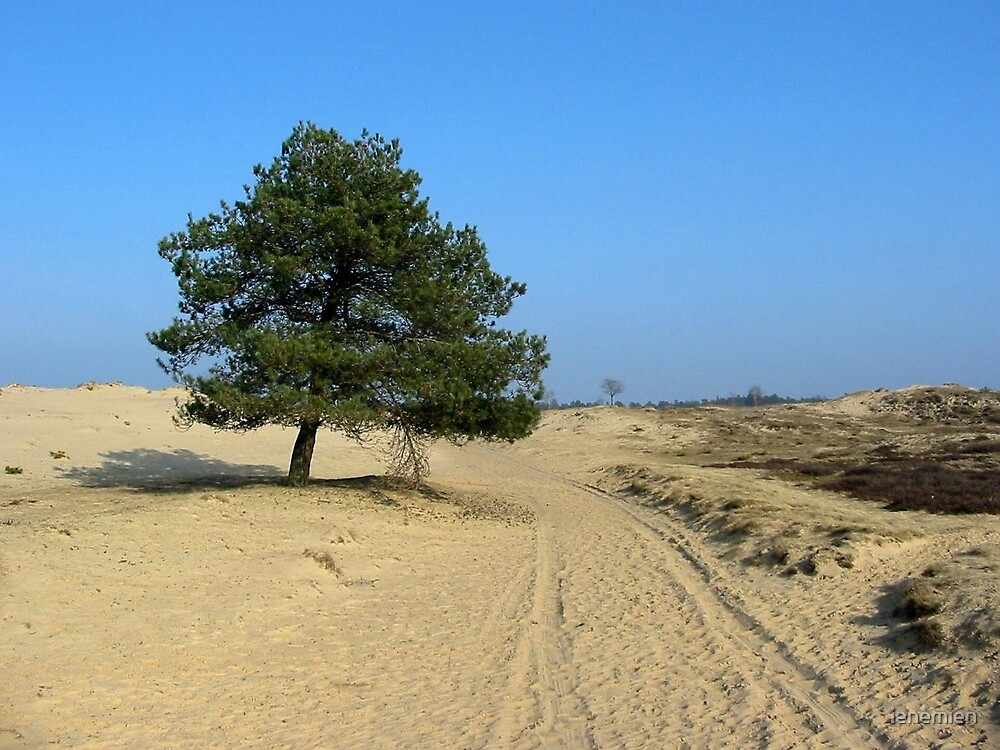 Only Sand and a Tree by ienemien