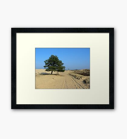 Only Sand and a Tree Framed Print