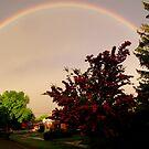 Over The Rainbow by Zoe Marlowe