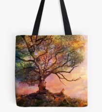 Sunset at Fox Mountain Tote Bag