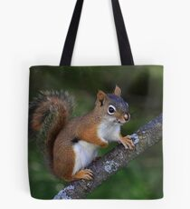 Here Is Looking At You Kid Tote Bag