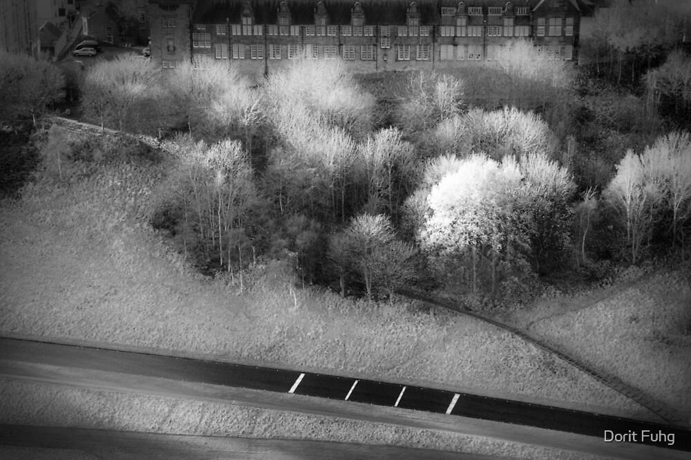 Holyrood Park by Dorit Fuhg