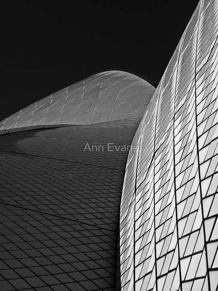 Blank and White by Ann Evans
