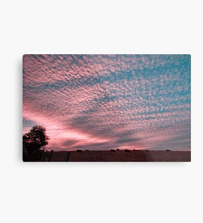 Sunset in Boonah Metal Print
