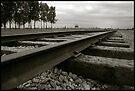 Auschwitz Birkenau - Railway by Peter Harpley
