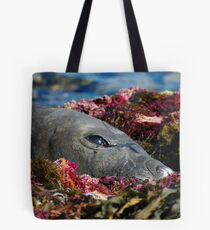 Lazin on a Sunny Afternoon Tote Bag