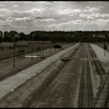 Auschwitz Birkenau - From the Death Gate by PeterHarpley