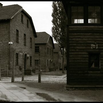 Auschwitz I Roll Call Hut (panoramic) by PeterHarpley