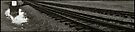 Auschwitz Birkenau - Death Gate (reflected) by Peter Harpley