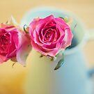 ~romance by TeresaMurphy