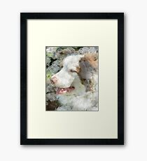 Man's Best Friend Framed Print