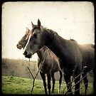 Melancholic Horses by Marc Loret