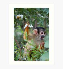 Flower Monkey Art Print