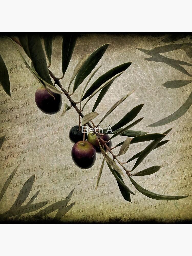 Olive Branch von betha
