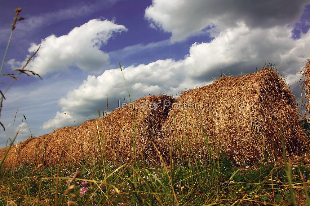 Haybales and Blue Skies by Jennifer Potter