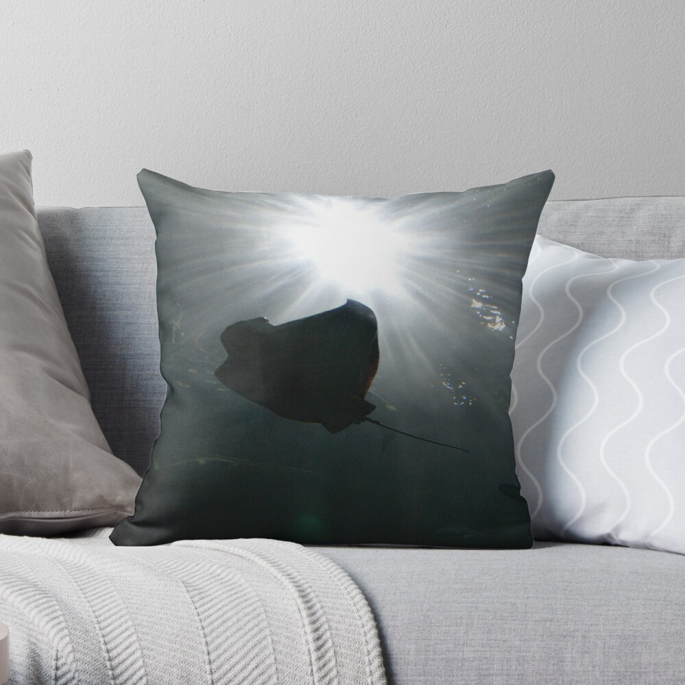 Catching Some Rays II Throw Pillow