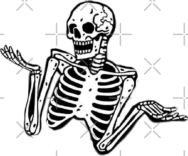 Erica Il Cane Rabbit Anatomy Rabbit Skeleton Skeleton Drawings