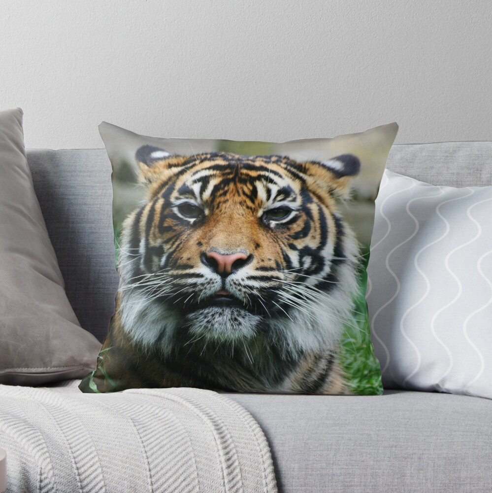 Tiger! Throw Pillow
