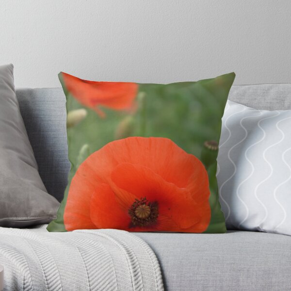 Authenticity... Throw Pillow