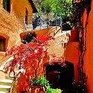The Silver Creek Inn Bed and Breakfast, Mogollon New Mexico  by F.  Kevin  Wynkoop