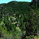 Gila Mts, above the Ghost Town of Mogollon by F.  Kevin  Wynkoop