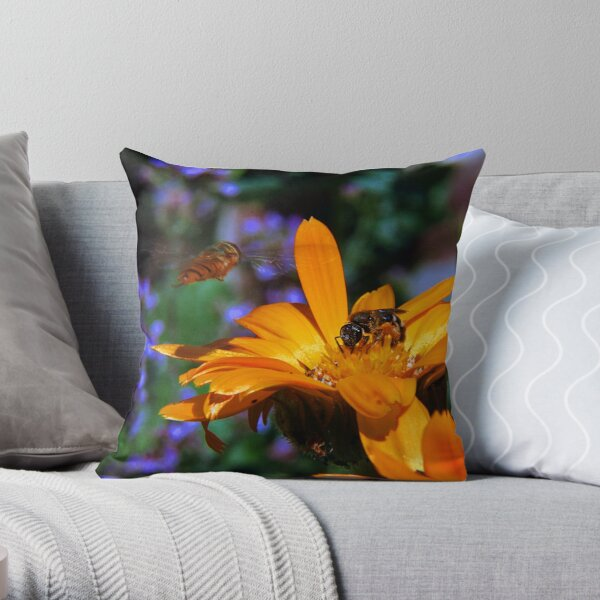 There May be Trouble Ahead Throw Pillow