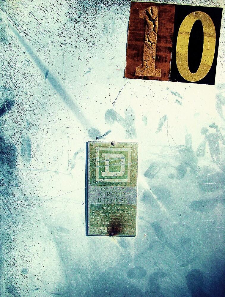 Breaker Breaker 10 ( Trailer Park America Series )  by Elizabeth Rodriguez