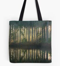 Echo~Totogatic Park, Minong, Wisconsin Tote Bag