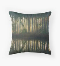 Echo~Totogatic Park, Minong, Wisconsin Throw Pillow